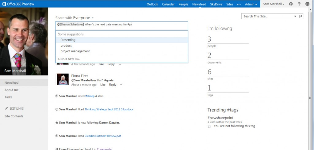 Newsfeed within SharePoint 2013 profile