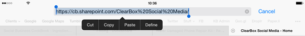 Copy the URL from Safari
