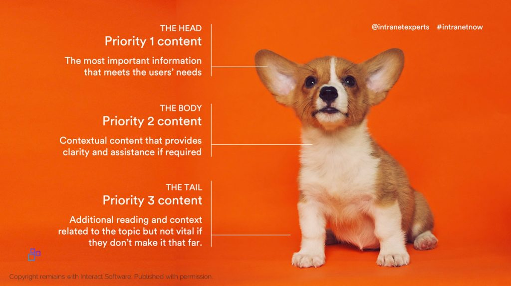 A dog and content: Head: Priority 2 content. Body: Priority 2 content, context. Tail: Priority 3 content, further reading.