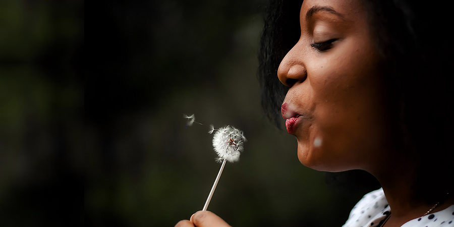 Wishing on a dandelion clock.